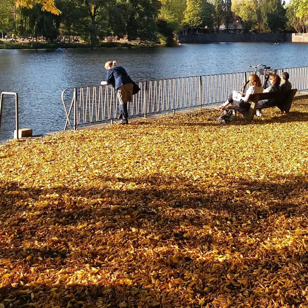 Herbst, Blätter, Gedanken, Meditation, Sehnsucht, Jahreszeiten